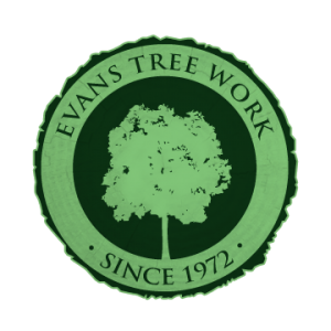 Evans Tree Work, specializing in tree removal, trimming, hazardous work and more.